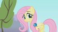 Thumbnail for version as of 17:05, December 9, 2011