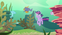 Twilight Sparkle floating in a sea of fish S6E21