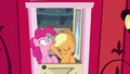 "AJ and Pinkie ""that was rhetorical"" S4E09.png"