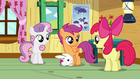 Apple Bloom 'And we haven't exactly figured out' S3E11
