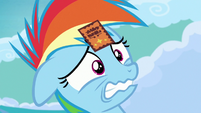 Filly Rainbow Dash embarrassed by her parents S7E7