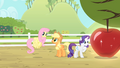 Fluttershy '... know how special that particular apple...' S4E07.png