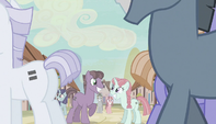 Town of equalized ponies S5E1