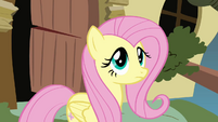 Fluttershy says no to Iron Will for the first time S2E19