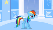 Rainbow Dash watching Dr. Hooves run off S1E16