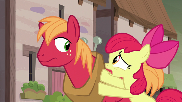 "File:Apple Bloom ""then you gotta tell her!"" S7E8.png"
