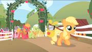 Filly Applejack leaving Sweet Apple Acres S1E23