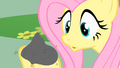 Fluttershy holds Philomena's ashes S01E22.png