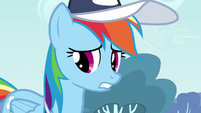 Rainbow Dash everypony except S2E22