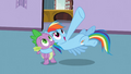 "Rainbow Dash ""a huge tower of rocks"" S03E09.png"