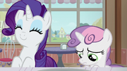 Rarity delighted; Sweetie Belle more discouraged S7E6.png