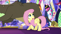 Fluttershy tries in rein in stampeding animals S5E3.png