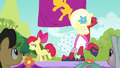 Apple Bloom and Orchard Blossom finish routine S5E17.png