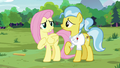 "Fluttershy ""I'm the one who should be sorry"" S7E5.png"