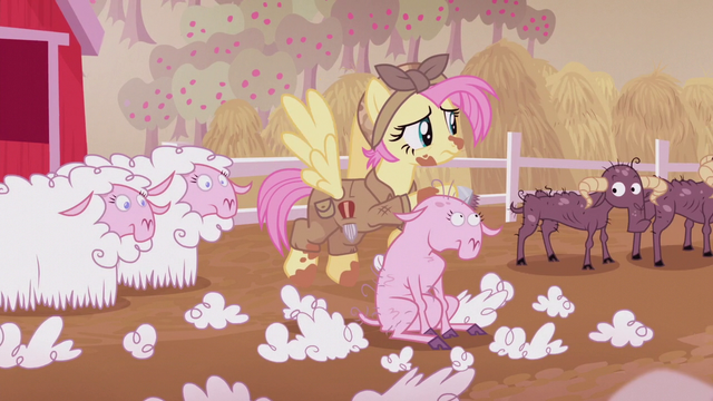 File:Fluttershy shearing sheep S5E25.png