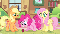 Pinkie Pie staring at the apple S04E07
