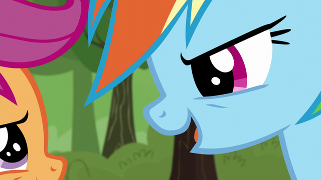 File:Rainbow quizzing Scootaloo on their race moves S5E17.png
