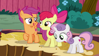 "Scootaloo ""what'd you think she was gonna be"" S6E19"