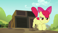 Apple Bloom lands on other side of crates S5E17.png