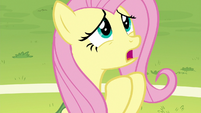 Fluttershy apologizing to Rainbow Dash S6E18