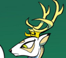 König Aspen