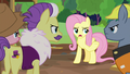 """Fluttershy """"I may not know much about"""" S7E5.png"""