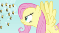 Fluttershy scolding the bees S4E16.png