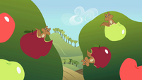 Squirrels with the apples S2E01