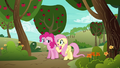 """Fluttershy """"or anypony else"""" S6E18.png"""