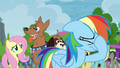 Rainbow Dash losing hope S4E22.png