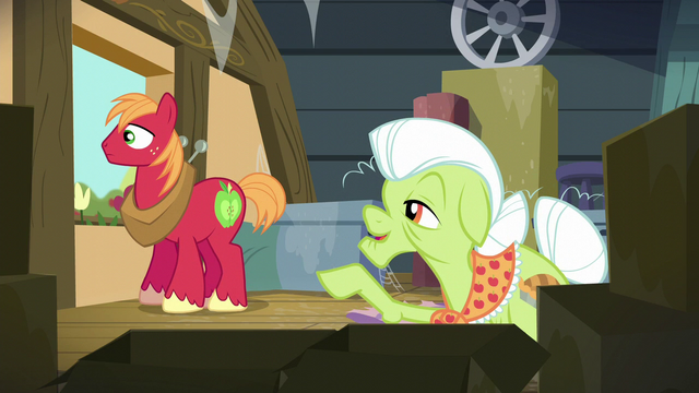 "File:Granny Smith ""when we hosted the very first Social!"" S5E17.png"