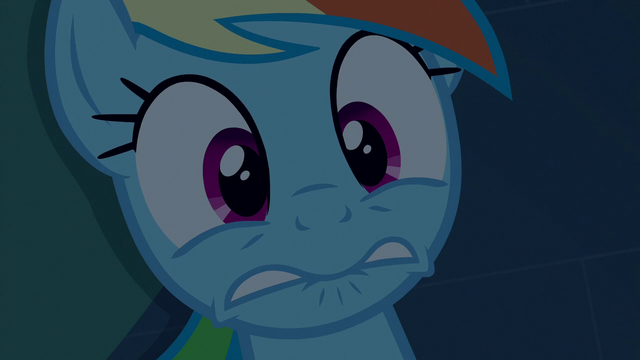 File:Rainbow Dash looking really scared S6E15.png
