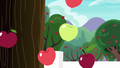 Apples fall out of the tree S6E22.png