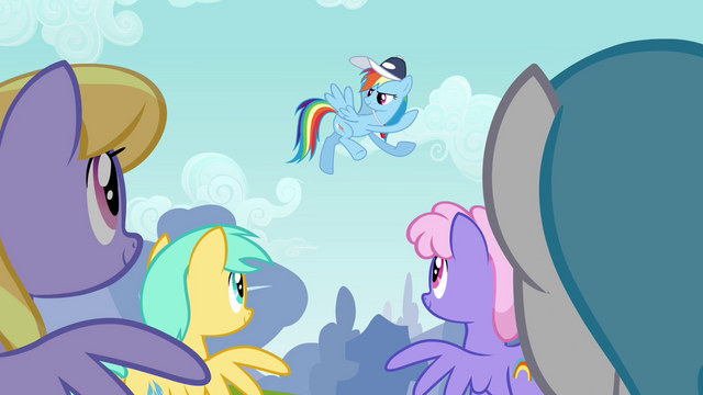 File:Rainbow Dash speaking to the Pegasi S2E22.png
