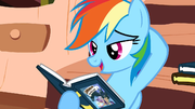 Rainbow Dash yeah S2E18.png