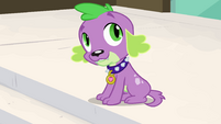 "Spike mentions Twilight's ""pesky wings"" EG"