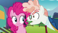 Svengallop threatening Pinkie Pie again S5E24