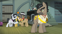 Daring Do warns Caballeron S4E04
