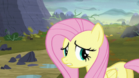 "Fluttershy ""oh, you poor things!"" S5E23"