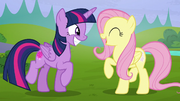 Twilight and Fluttershy smiling wide S5E23.png