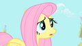 "Fluttershy ""maybe Spike feels threatened"" S1E24.png"