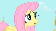 "Fluttershy ""maybe Spike feels threatened"" S1E24"