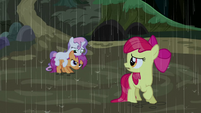 Cutie Mark Crusaders soaking wet S5E6