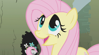 "Fluttershy ""not at all"" S2E01"