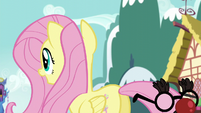 Fluttershy trying to find an albino squirrel supposedly around her S5E19