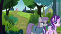 Maud and Starlight walking away from Pinkie S7E4.png