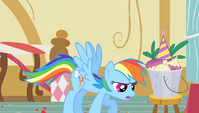 Rainbow Dash 'You should really just' S1E25