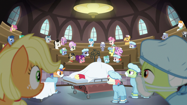 File:Applejack and Granny Smith in a surgery theater S6E23.png