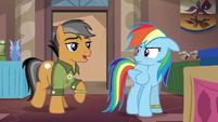 Rainbow Dash encounters Quibble again S6E13