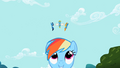 Rainbow and Wonderbolts S02E10.png